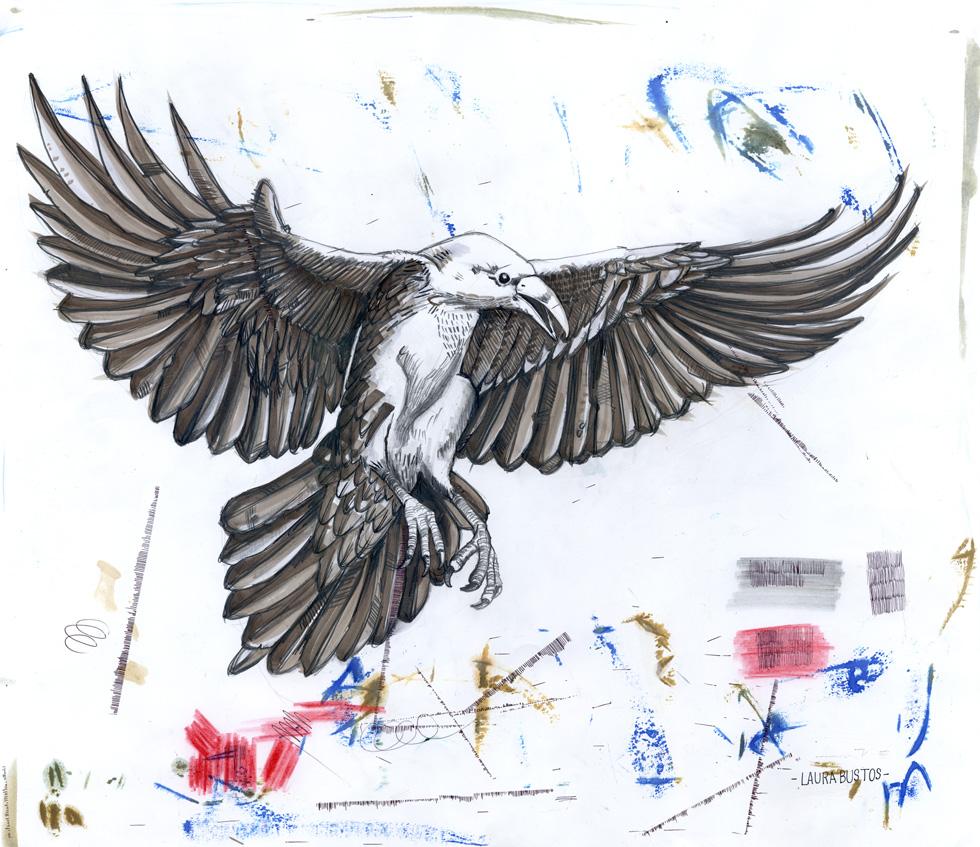 Laura Bustos. Ilustración. Cuervo