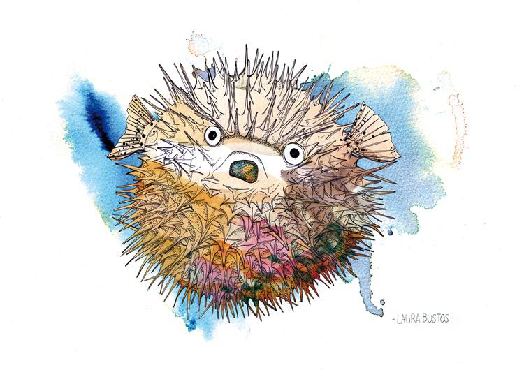 Laura Bustos. Ilustración