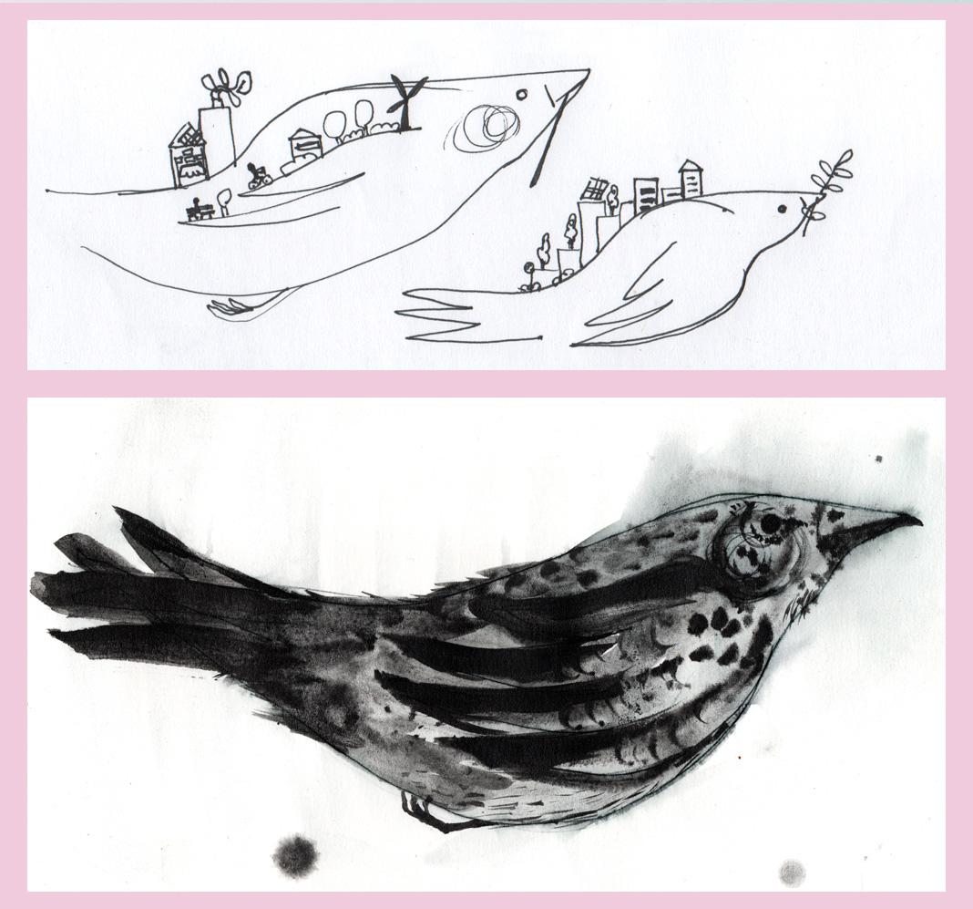 Paloma bocetos previos, ilustración cartel. Laura Bustos