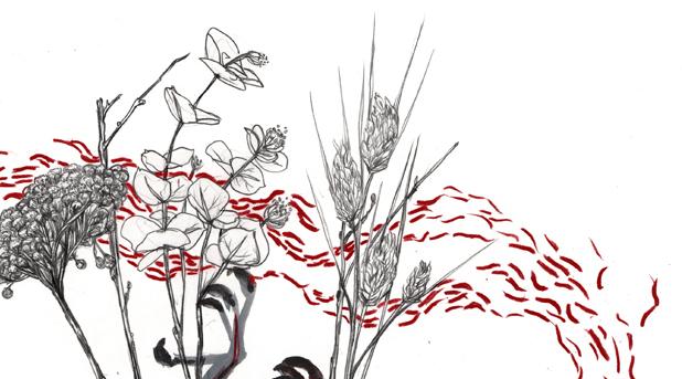Pájaro muerto floreciendo